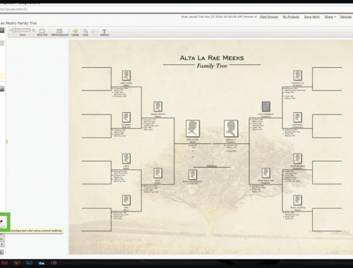 4 Genealogy Tv Shows You Have To Watch Mycanvas