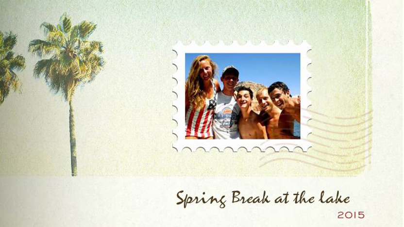 spring break photo album book